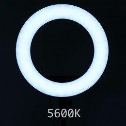 Ring Light for Sminke - Kosmetikk Studio 5600K kall lys