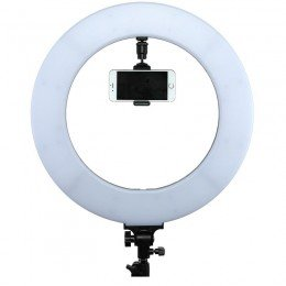 Ringlys lampe CLR-60W med øvre brakett for telefonholder.